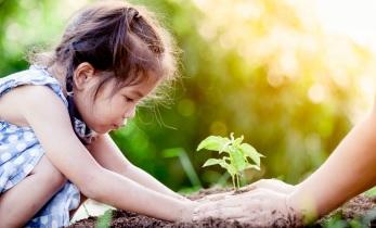 De 6 grundläggande mänskliga behoven